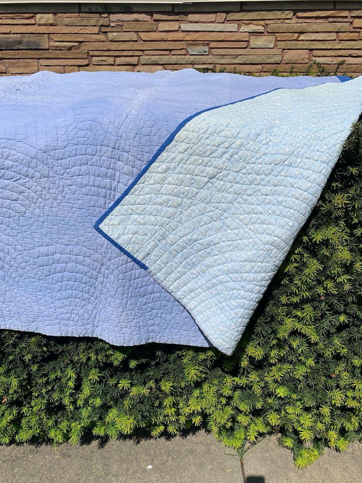 7-quilt with corner folded on bush