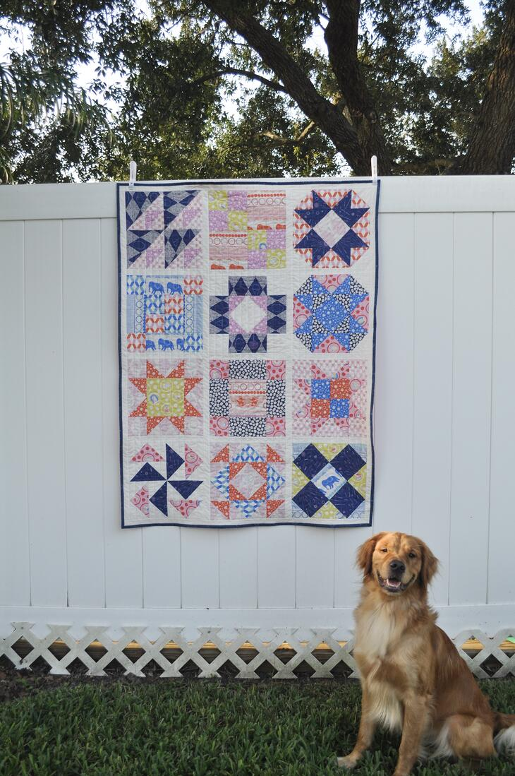 Ring Toss FIGO Fabrics Sampler quilt made with AccuQuilt GO! Qube 12 inch hung on fence with golden retriever