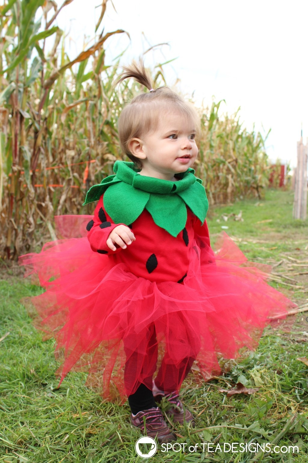 Strawberry-Halloween-Costume-spot of tea
