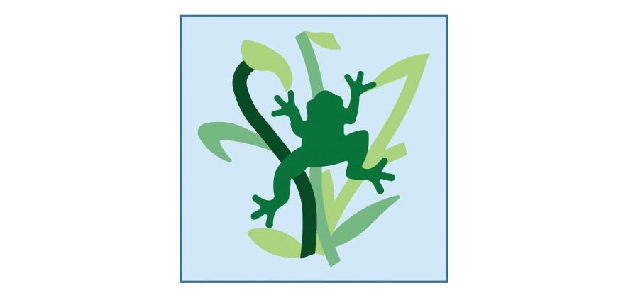 other-proj-frog